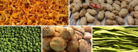 New Food Challenge: 1,8 miljoen voor nieuwe plantaardige voedselproducten